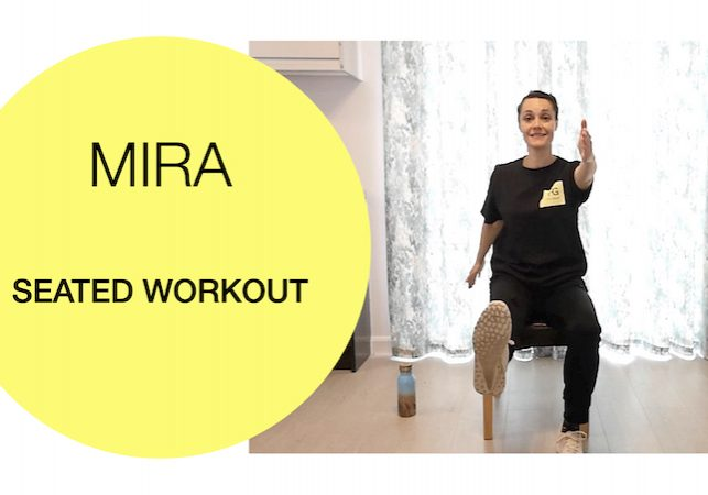 Seated strength cardio workout